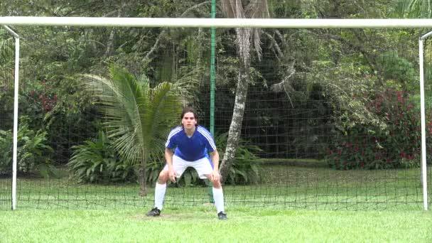 futball kapus, játékos, futbol, sport