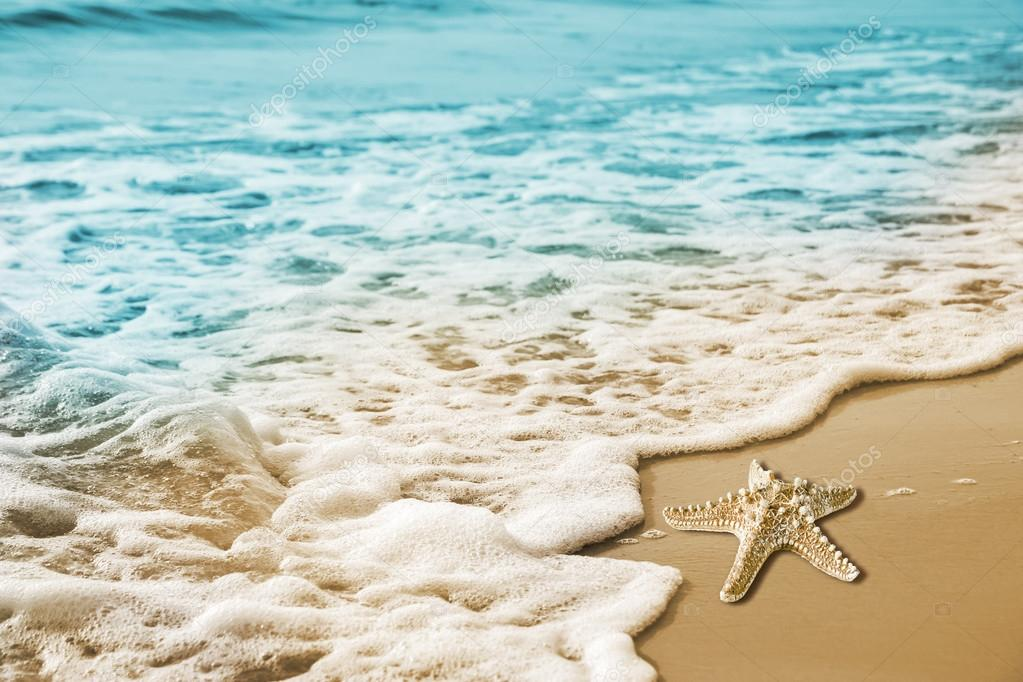 Starfish and soft wave on the sandy beach