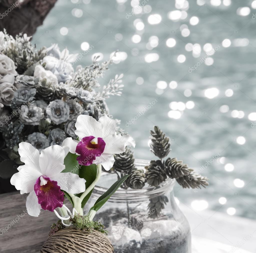 Цветы в горшок виды