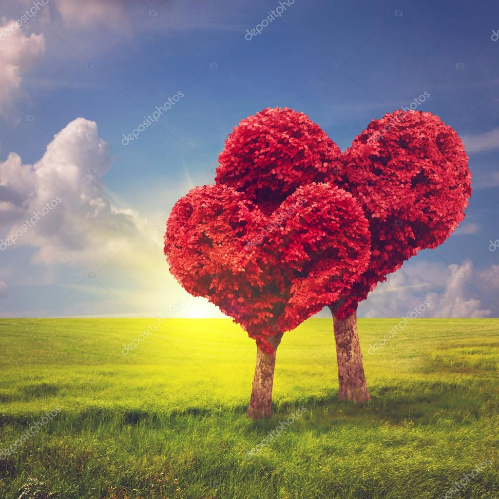 Heart shape trees