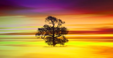 colorful sundown landscape