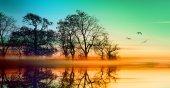 Fotografie Krajina barevných západu slunce