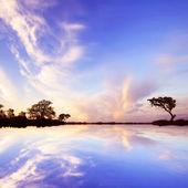 nádherná příroda
