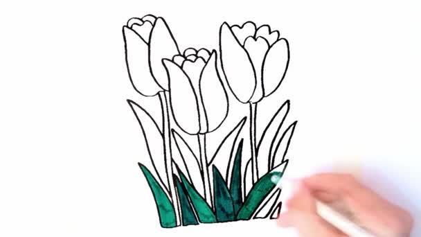 A vörös tulipánvirágos kézi színezés időzítése.