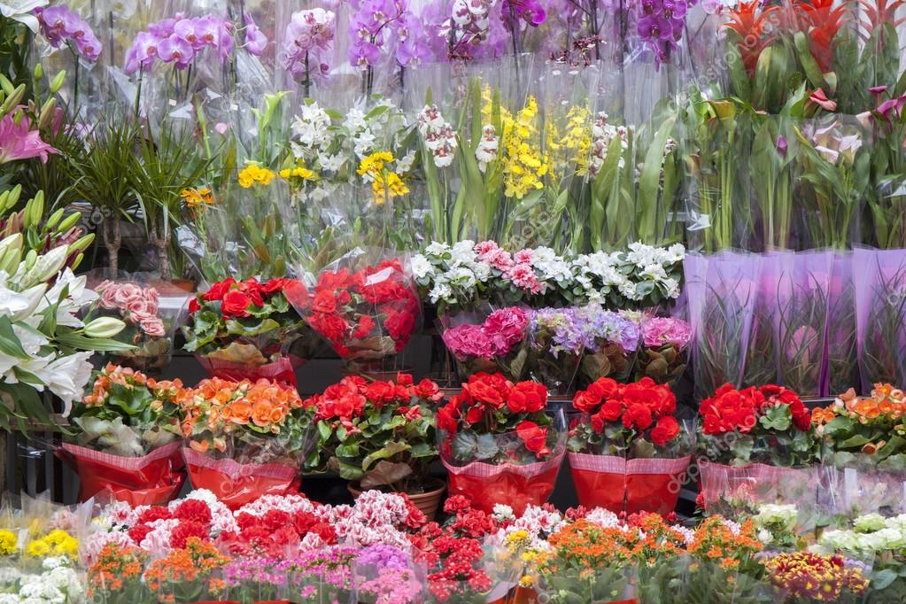 Flower Shop With Full Shelves
