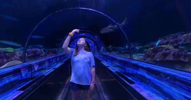 Orlando, Florida. 31. srpna2021. Girl enjoying Shark Encounter at Seaworld (20)