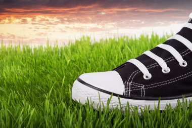Black and white shoe on green grass at sunset