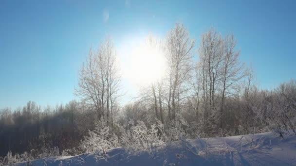 Winterlandschaft und strahlender Schnee bei schönem Sonnenschein.