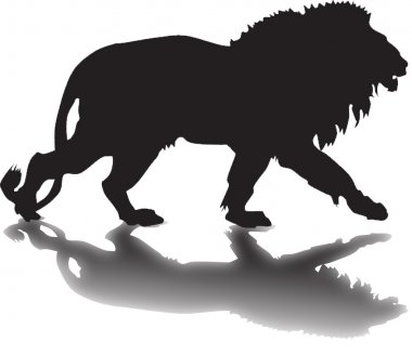 silhouette of a lion with a shadow