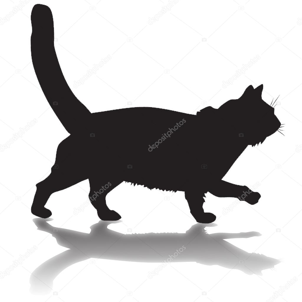7d5b43c6e15ad silueta de un gato negro con sombra — Foto de stock © tcheres  79143644
