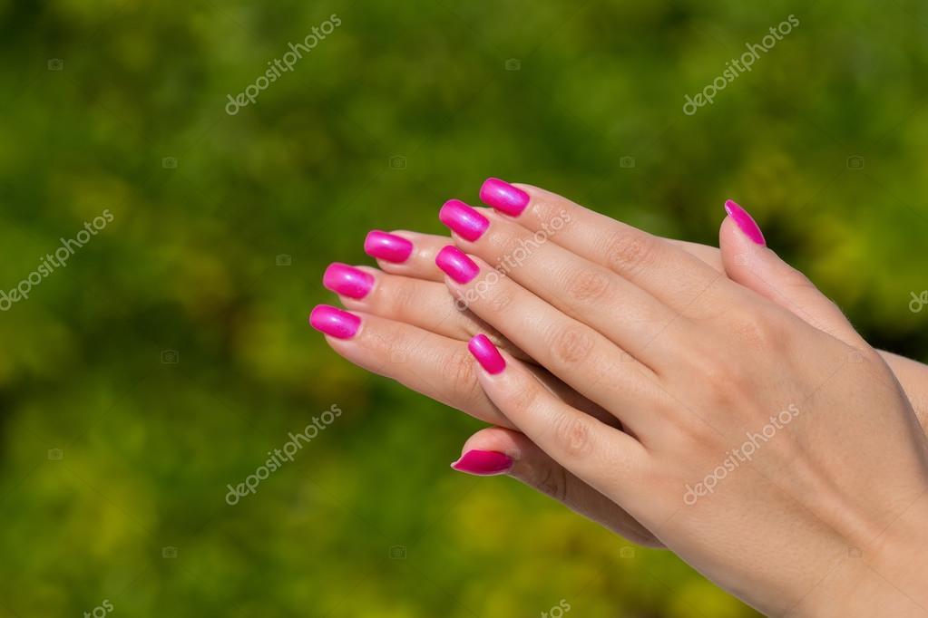 Manos de mujer con rosa cuidado uñas closeup. Coche de piel y uñas ...