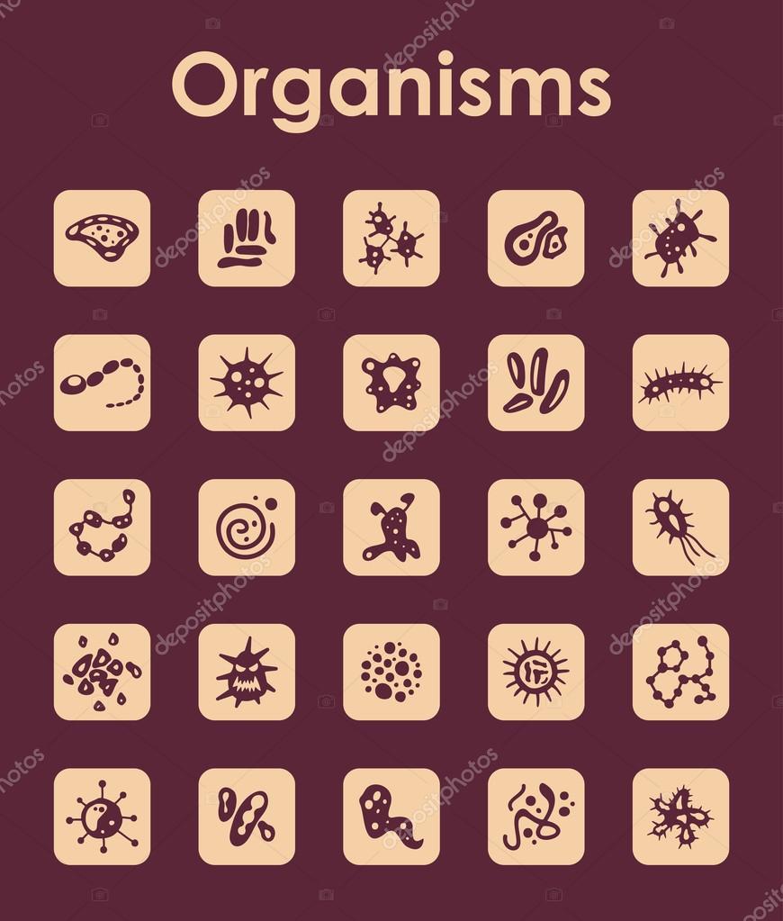 Satz von Organismen einfache Symbole — Stockvektor © Palau83 #77550854