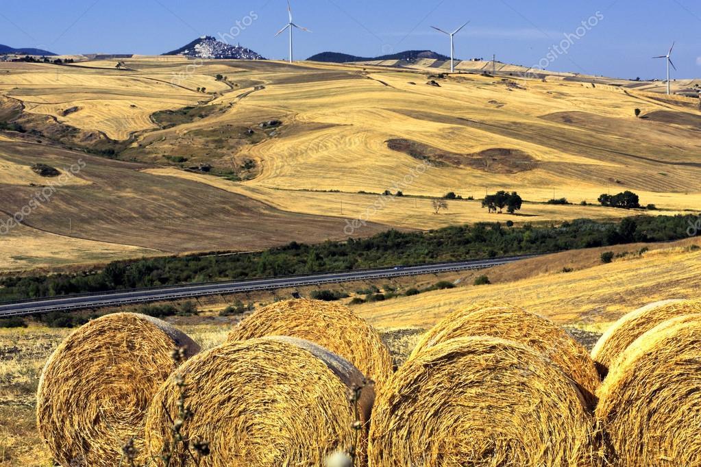 Paesaggi Estivi In Italia Foto Stock Albertotirri 99878932