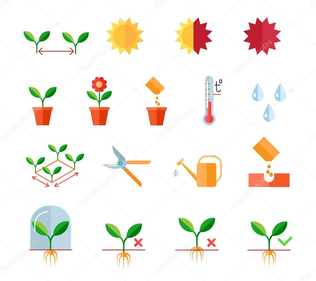 Seeding and planting instructions steps, pruning shears, watering flat icons set
