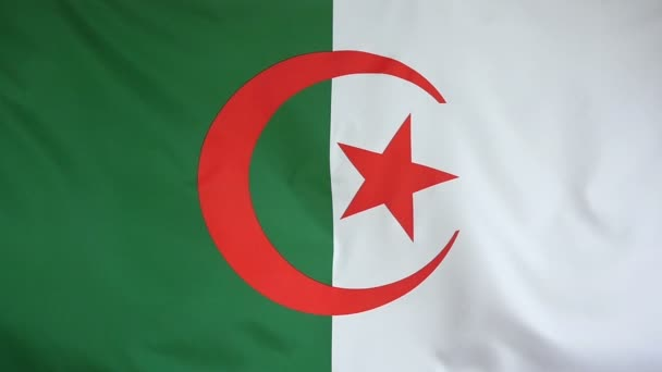 Slowmotion real textile Flag of Algeria