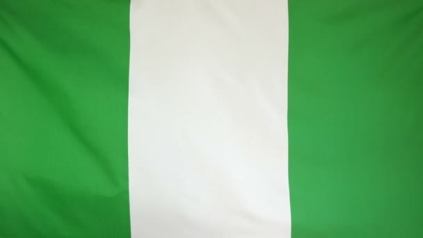 Nigeria Flag real fabric close up