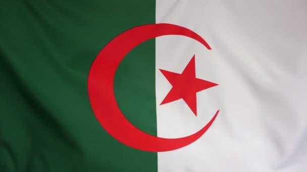 Algeria Flag real fabric close up