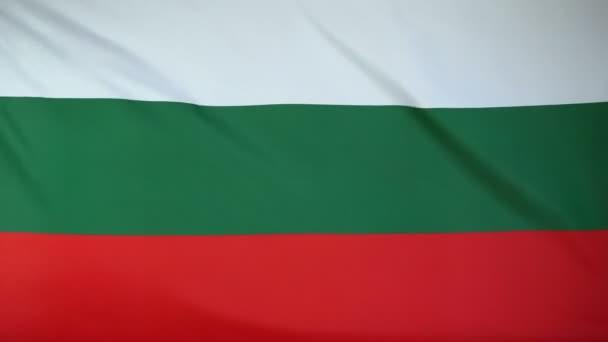 Bulgaria Flag real fabric close up