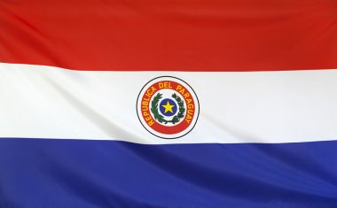 Paraguay Flag real fabric
