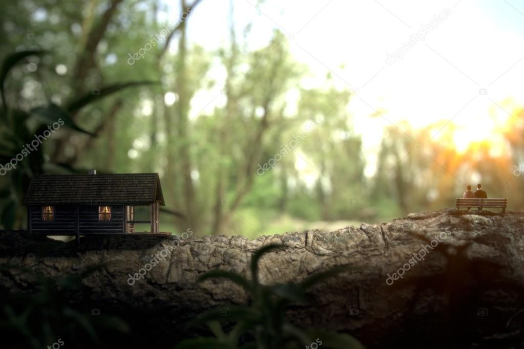 Living in a wooden house inside a forest