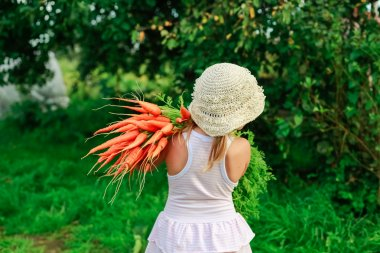 Girl with a bunch of freshly carrots