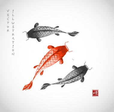 Black and red koi carps