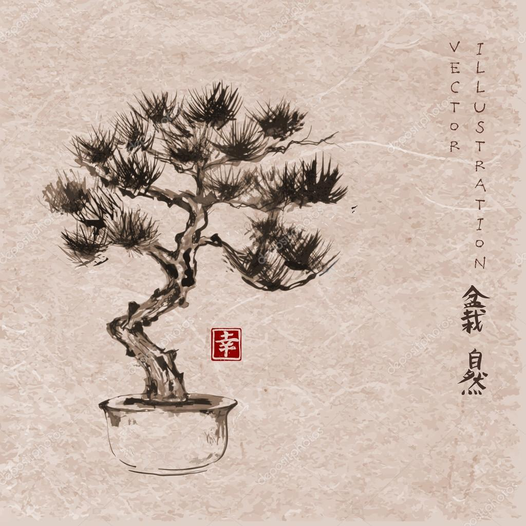 Bonsai Pine Tree Vector Image By C Elinacious Vector Stock 92054258