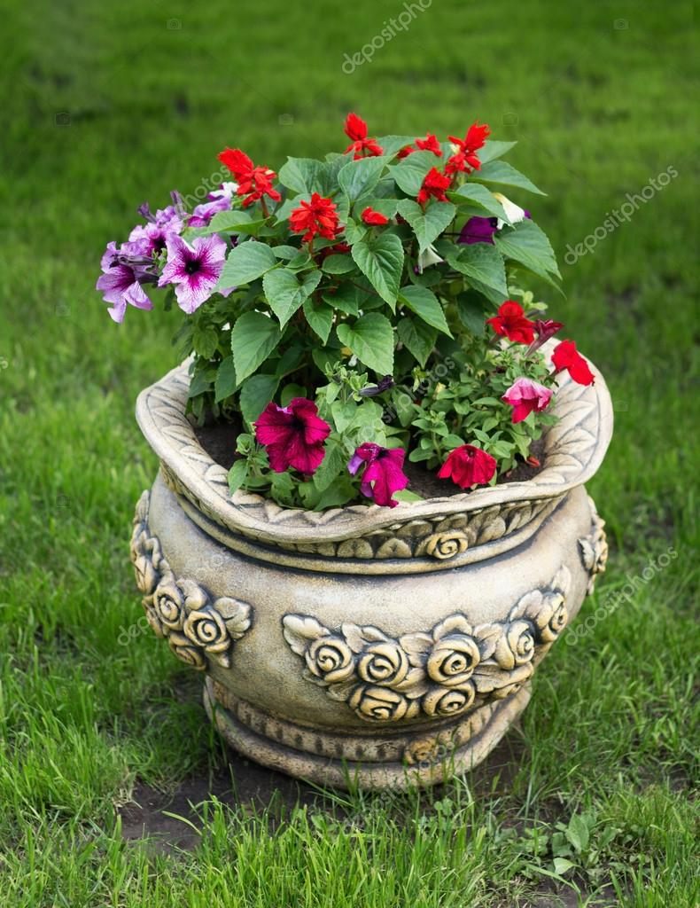 Beautiful flower pot