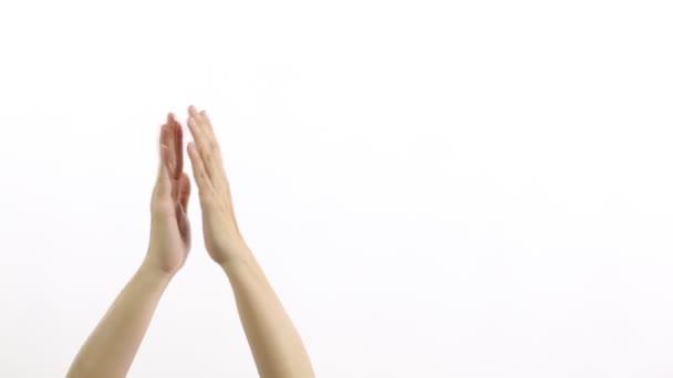 Tapsolj vagy tapsolj fehér, elszigetelt háttérrel.