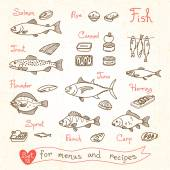 Fotografia Set drawings of fish for design menus, recipes and packing. Trout, herring, sprat, flounder, perch, carp, tuna, salmon, roe, canned .