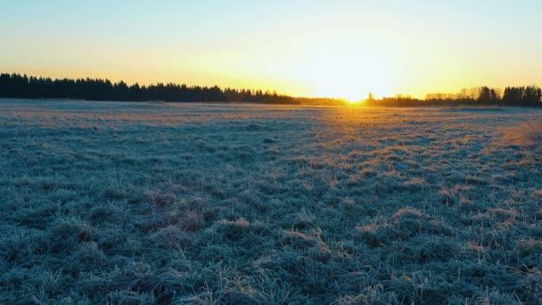 Zlaté slunce vychází nad zasněženým polem a maluje studenou zimní krajinu.