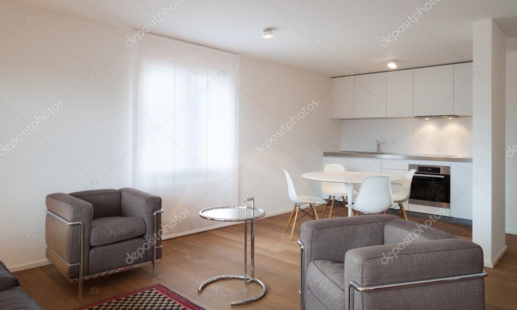 Innenraum, großes Wohnzimmer — Stockfoto © Zveiger #60892179