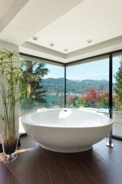 Beautiful bathroom view