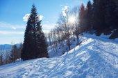Paesaggio alpino invernale in Svizzera