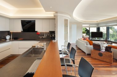 kitchen of a luxury apartment