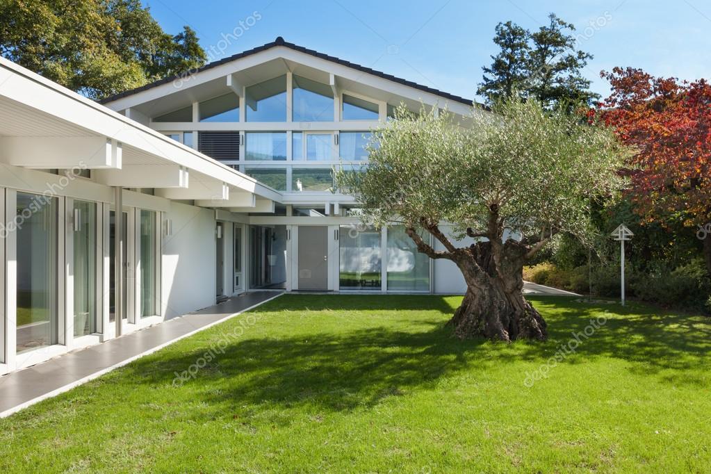 jardin d\'une maison moderne avec Olivier — Photographie Zveiger ...