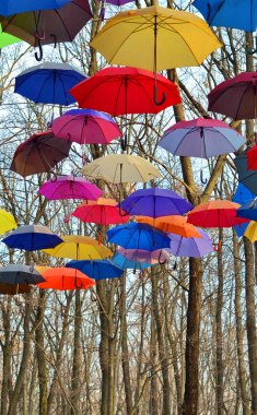 Many Bright umbrellas. Bright, Vivid Colors. Freedom concept