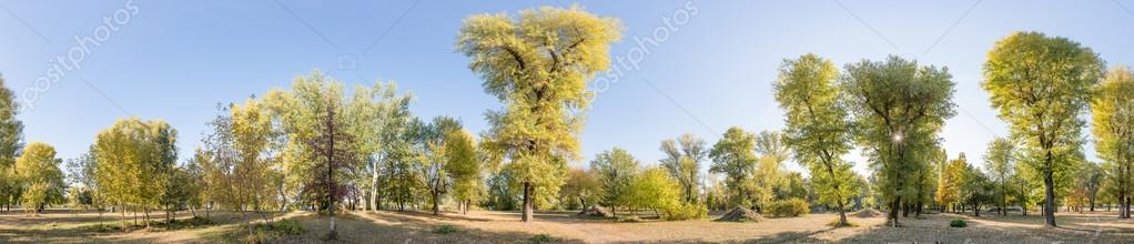 360 Degree Panorama Of Various Trees And Bushes In The Park During A Late Summer Afternoon Soft White Clouds Flow Blue Sky Photo By Maxal Tamor