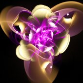 Unusual fractal flower.