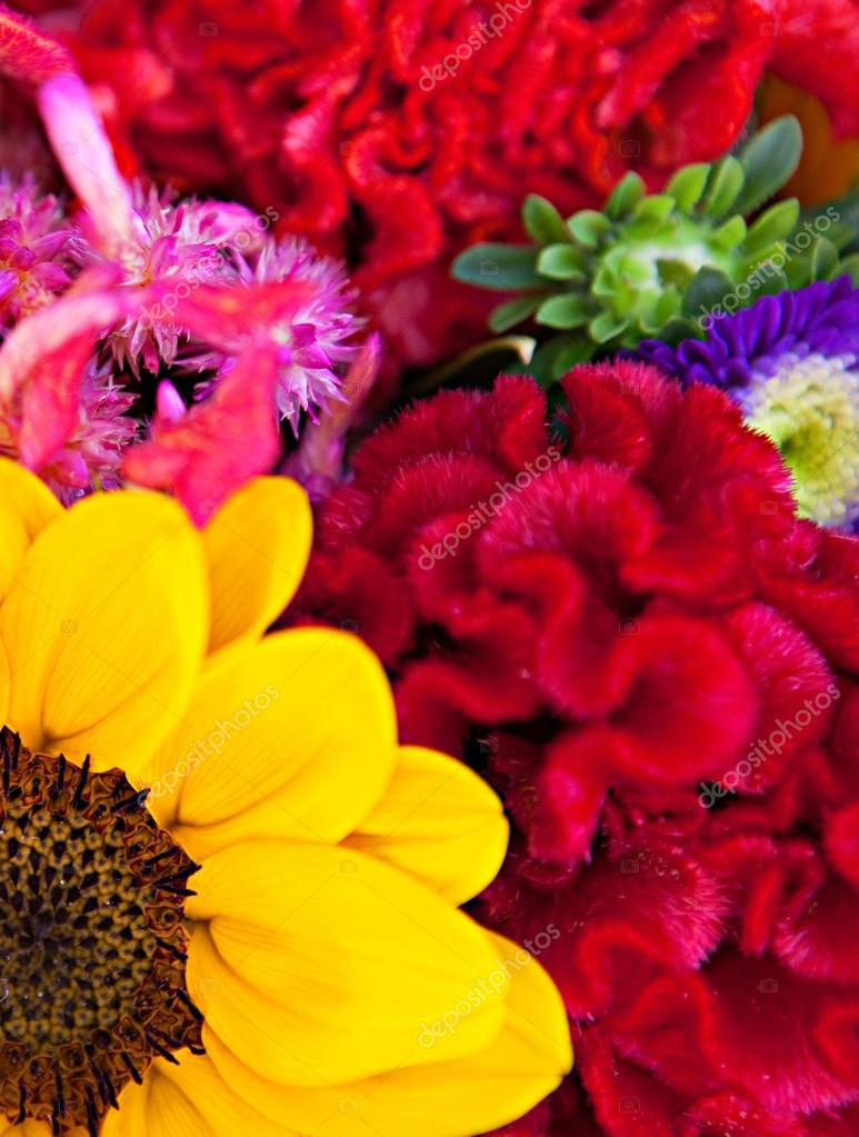bouquet of a different color flowers — Stock Photo © mjth #79002032