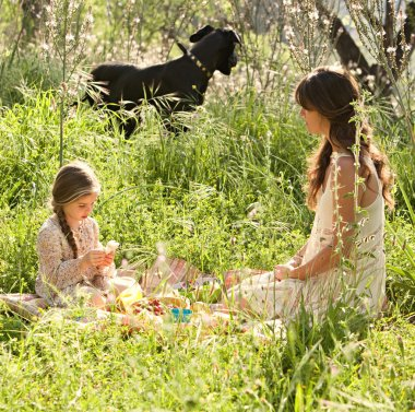 Mother and daughter having a picnic in a garden