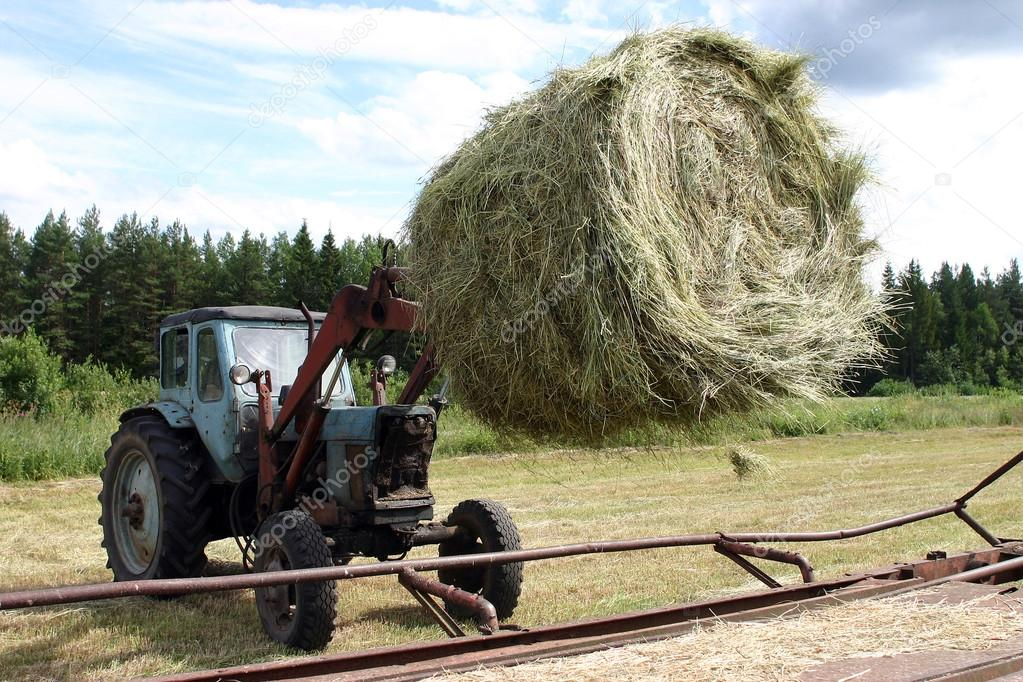 Tractor with bucket forklift moves circular bale hay in trailer.