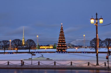 Evening city at New Year decorations, artificial Christmas fir tree.