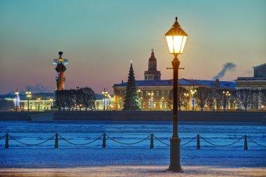 Christmas decoration of St. Petersburg, Russia, winter evening, BirzhevayaSquare.