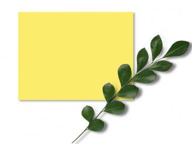"""Картина, постер, плакат, фотообои """"пригласительный билет с зеленой веткой """", артикул 458238750"""