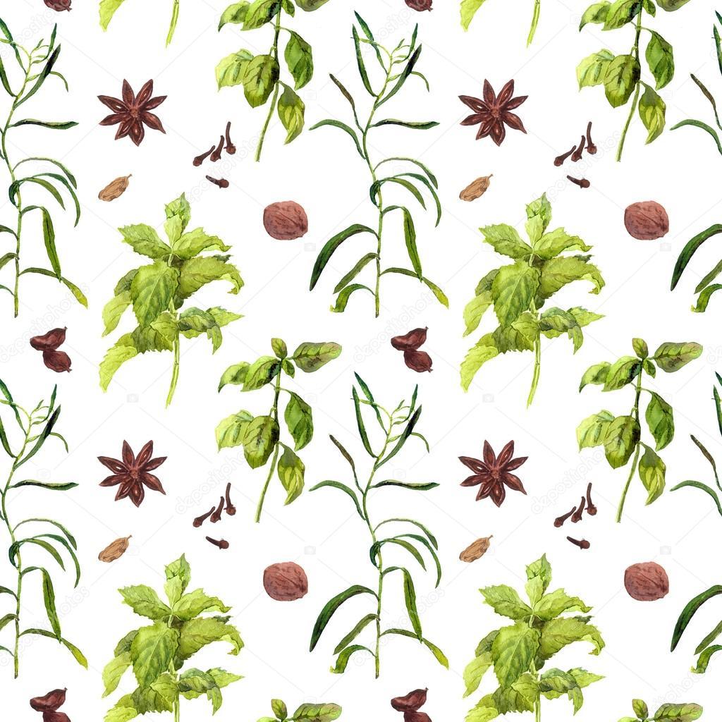 Specie e piante di erbe per la cucina. Carta da parati dell ...