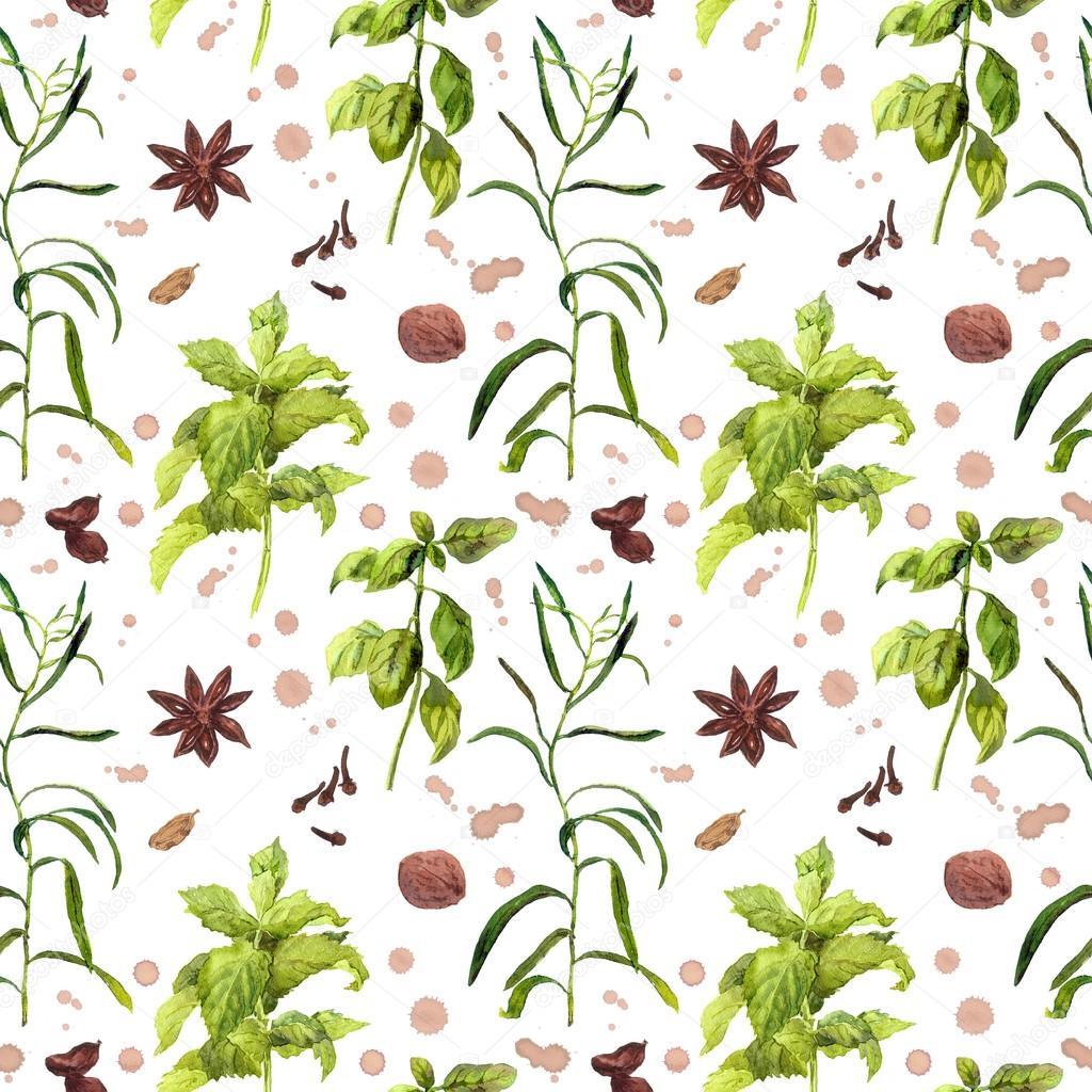 Arten und Kräuter Pflanzen für die Küche. Wiederholte Aquarell ...