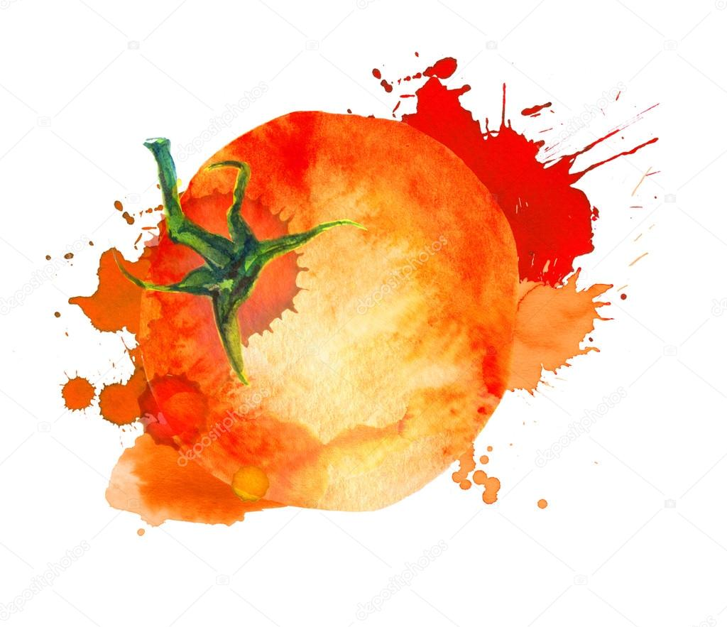 tomato with splash watercolor for ketchup sauce juice