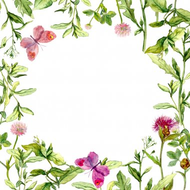 Border frame with wild herbs, meadow flowers and butterflies. Watercolor