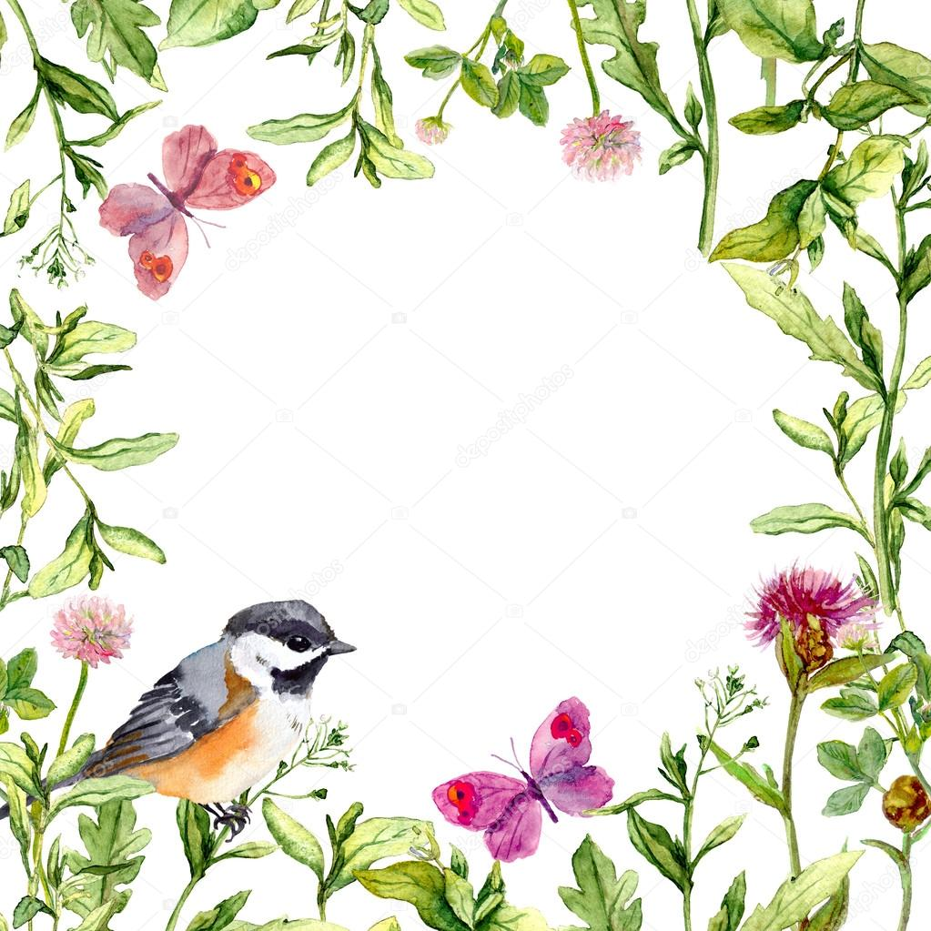 Border frame with summer herbs, meadow flowers, bird and butterflies. Watercolor